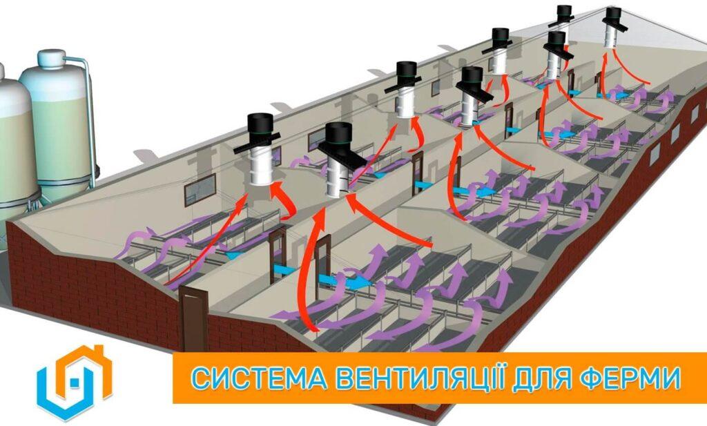 Вентиляція тваринницьких ферм - монтаж вентиляції в корівниках